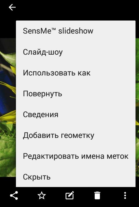 Опции изображения